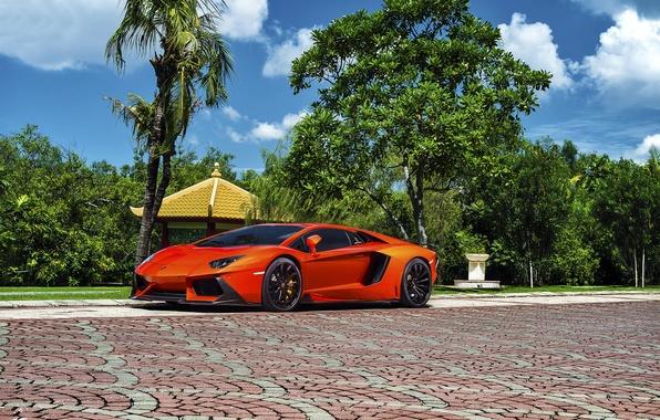 Picture Lamborghini, Orange, Front, Vorsteiner, Colored, Supercar, Exotic, Zaragoza, Aventador-V, LP740-4, Brightly