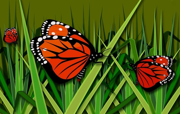 Picture grass, butterfly, figure, vector