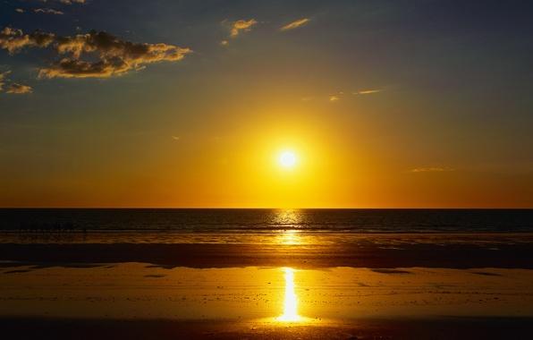 Picture sand, sea, beach, summer, the sun, landscape, sunset, nature, the ocean, camels, caravan