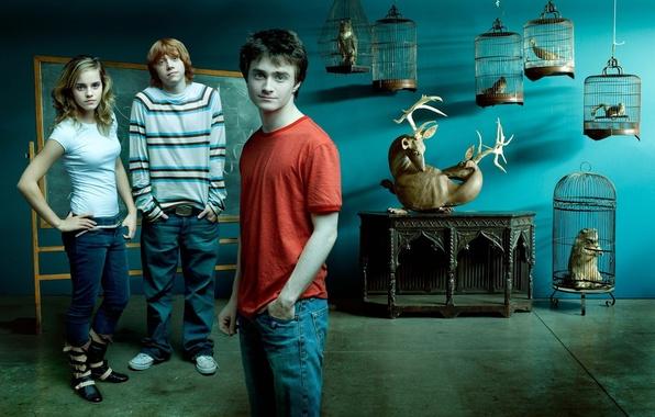Picture Harry Potter, Emma Watson, Emma Watson, Daniel Radcliffe, Harry Potter, Hermione Granger, Daniel Radcliffe, Rupert …