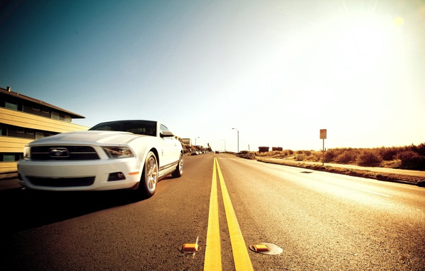 Picture road, mustang, ford, muscle car, 5.0