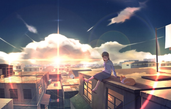 Picture cat, girl, landscape, sunset, the city, home, roof, art, wack