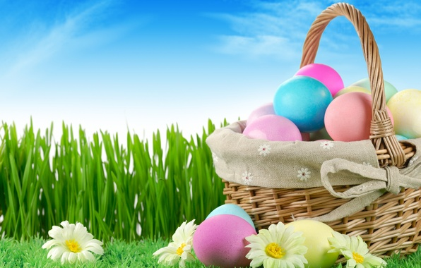 Picture grass, sky, nature, flowers, Easter, eggs, holiday