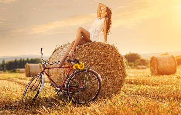 Picture field, girl, bike, sunflower, haystack