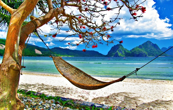Picture summer, grass, beach, sky, sea, ocean, landscape, nature, mountains, clouds, exotic, hammock, tropical