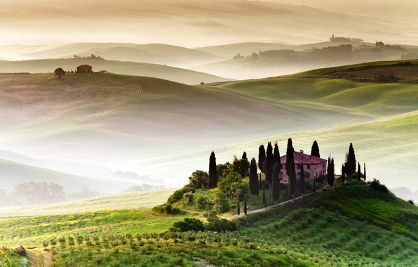 Picture trees, fog, house, field, hill, space, Italy, Tuscany, Tuscany