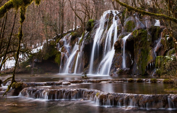 Picture forest, trees, river, waterfall, cascade
