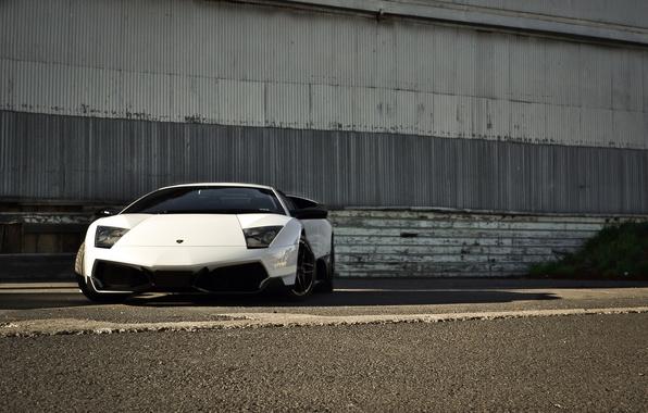 Picture white, asphalt, wall, shadow, white, lamborghini, front view, murcielago, Lamborghini, toned, Murcielago, lp670-4 sv