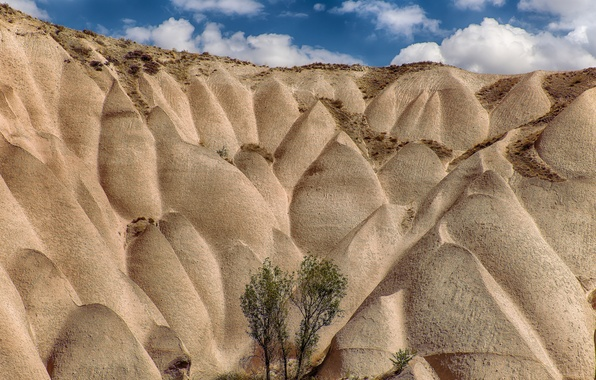 Picture sand, the sky, trees, hills, Turkey, Cappadocia