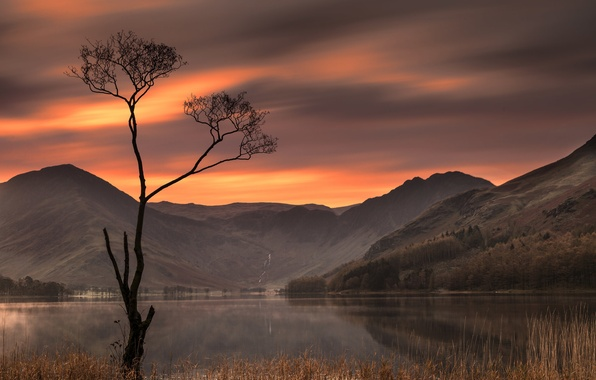 Picture sunset, mountains, lake, tree, England, England, The lake district, Lake District, Buttermere Lake