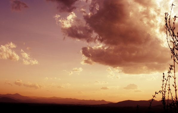 Picture the sky, grass, clouds, landscape, plants, nature, view, clouds