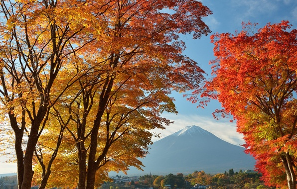 Picture autumn, the sky, leaves, trees, lake, home, Japan, mount Fuji