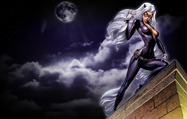 Picture roof, the sky, look, night, the moon, mask, art, costume, white hair, catwoman, cat woman