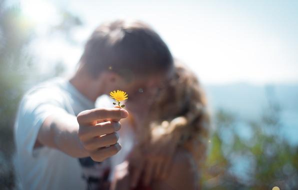 Picture flower, macro, yellow, people, kiss, pair, blur, weed