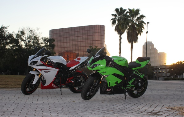 Picture the city, palm trees, green, white, ninja, yamaha, kawasaki, Yamaha, ninja, zx-6r, yzf-r1, kwasaki