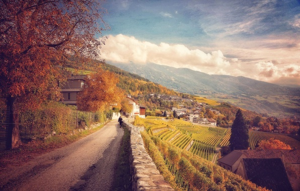 Picture road, autumn, clouds, trees, landscape, mountains, foliage, slope, Italy, houses, the vineyards
