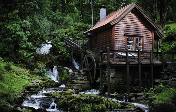 Picture forest, house, river, mill