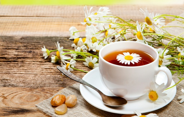 Picture flowers, tea, chamomile, mug, drink, spoon, saucer
