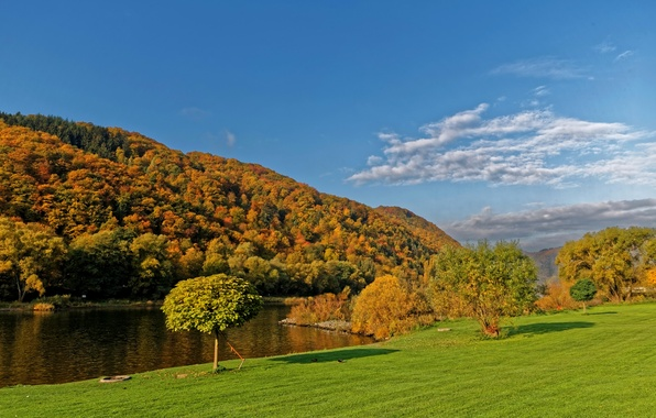Picture autumn, the sky, grass, the sun, clouds, trees, river, shore, Germany, Ediger-Eller