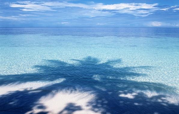 Picture water, blue, Palma, shadow, horizon