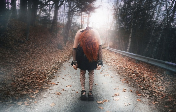 Picture road, autumn, girl, the situation