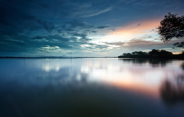 Picture the sky, water, clouds, trees, surface, dawn, shore, morning, Lake