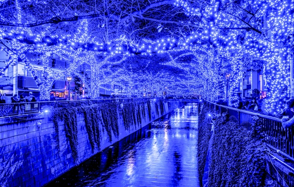 Picture lights, holiday, the evening, Japan, Tokyo