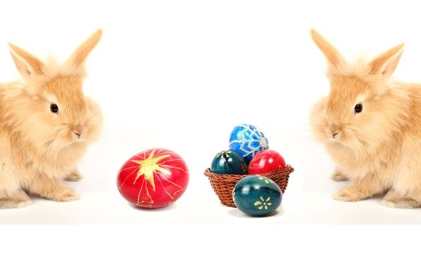 Picture egg, Easter, pair, rabbits, easter