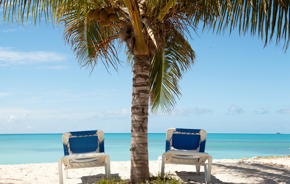 Picture sand, sea, beach, summer, Palma, stay, chaise, summer, beach, sun, sand, vacation, palm