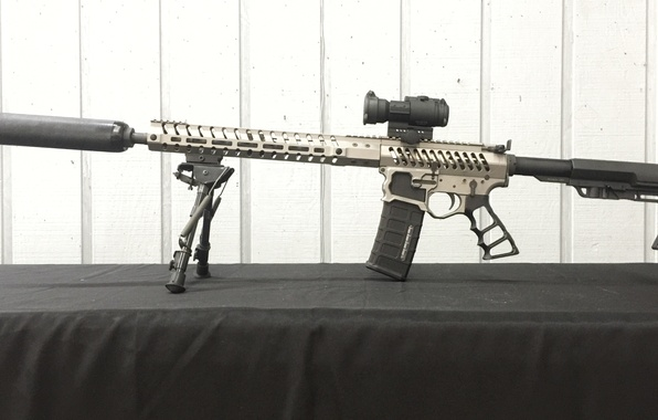Picture style, rifle, telescopic sight, modified