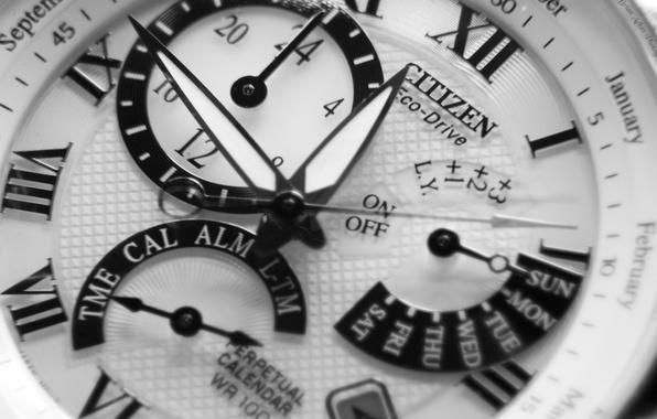 Picture white, black, watch, jack Citizan