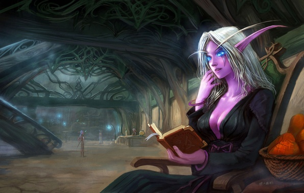 Picture basket, elf, art, book, ears, the room, wow, world of warcraft, night elf, sitting, yao …
