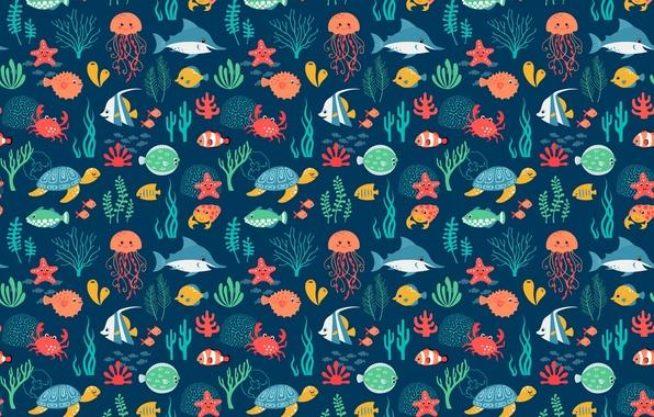 Picture sea, fish, turtle, Medusa, shark