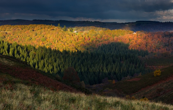 Picture autumn, forest, the sky, trees, clouds, hills, England, the evening, UK, National Park, Dartmoor