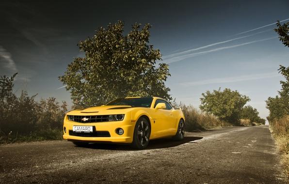 Picture road, auto, yellow, Chevrolet, camaro, chevrolet, muscle car, Camaro
