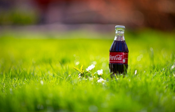 Picture grass, macro, nature, bottle, spring, drink, Coca-Cola, Coca-Cola, bottle