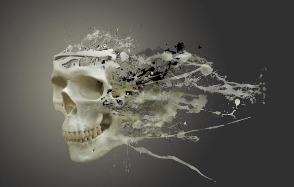 Picture background, divorce, Skull, blots