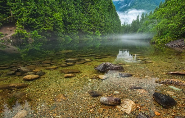 Picture forest, trees, mountains, fog, lake, river, stones, Canada, British Columbia, Canada