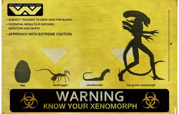 Picture warning, stranger, alien, alien, egg, Xenomorph, chest burster, facehugger