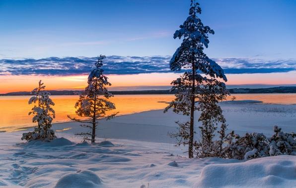 Picture winter, snow, trees, sunset, lake, Sweden, Sweden, Varmland County, Värmland