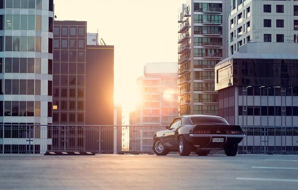 Picture the sun, the city, black, Chevrolet, Camaro, Chevrolet, muscle car, black, Blik, skyscrapers, megapolis, muscle …