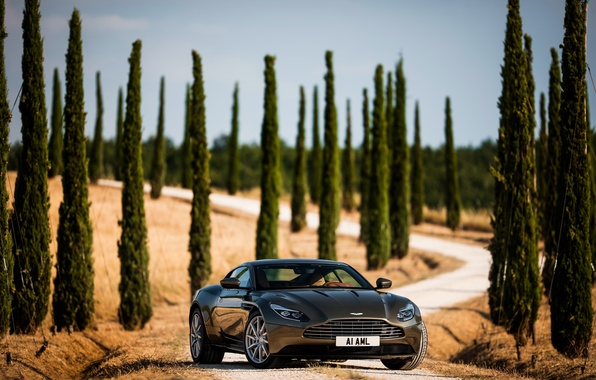 Picture road, machine, auto, the sky, trees, Aston Martin, supercar, handsome, cypress, DB11