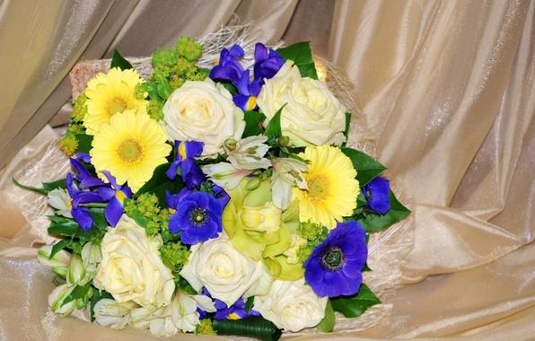 Picture photo, Flowers, Bouquet, Roses, Gerbera, Irises