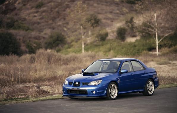 Picture Subaru, Impreza, WRX, blue, blue, Subaru, Impreza
