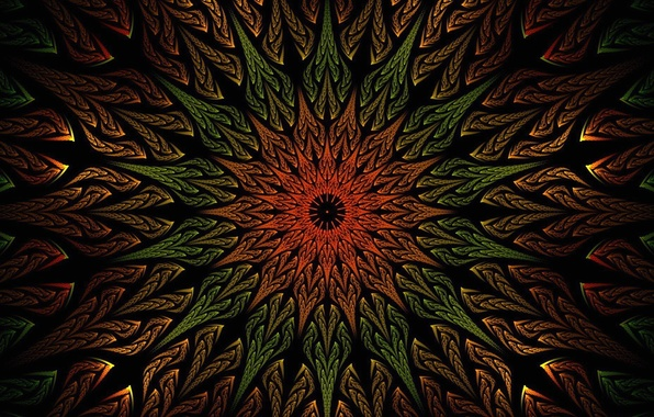Picture flower, rays, pattern, paint, petals, the volume