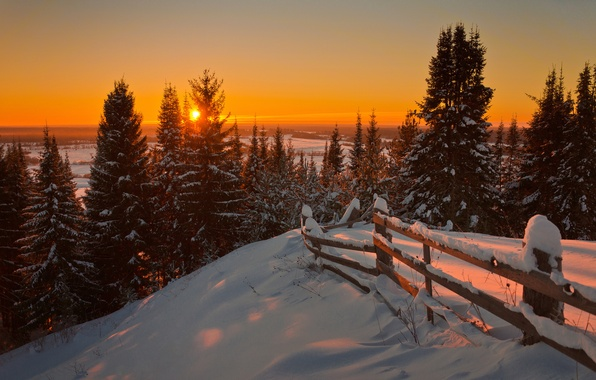 Picture Nature, Winter, Landscape, Sun, Snow, Sunrise, Firs
