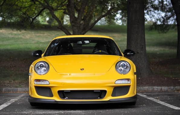 Picture yellow, Porsche, Porsche, Porsche GT3 RS 4