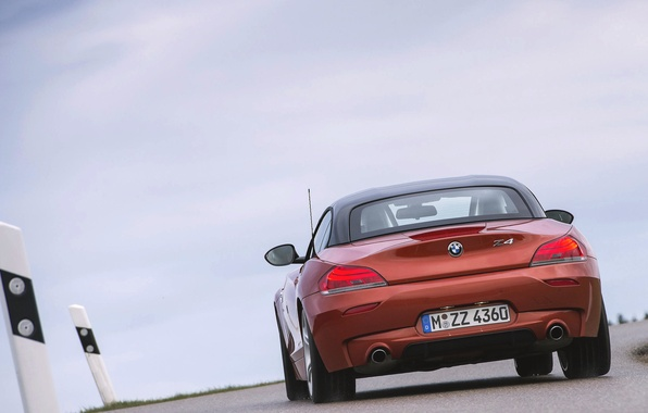 Picture Roadster, Auto, Road, BMW, Boomer, Asphalt, BMW, Orange, Rear view, In Motion