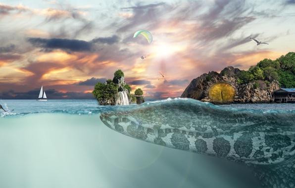 Picture sea, the sky, sunset, creative, rocks, waterfall, Seagull, yacht, crocodile, horizon, fantasy, surfer, huge, skydivers