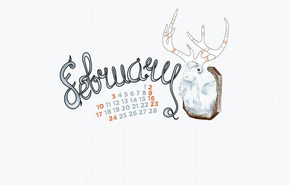 Picture hamster, horns, calendar, February, 2013, february